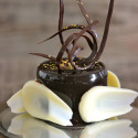 Mousse de chocolate negro y glaseado brillante